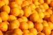 laranja20.jpg